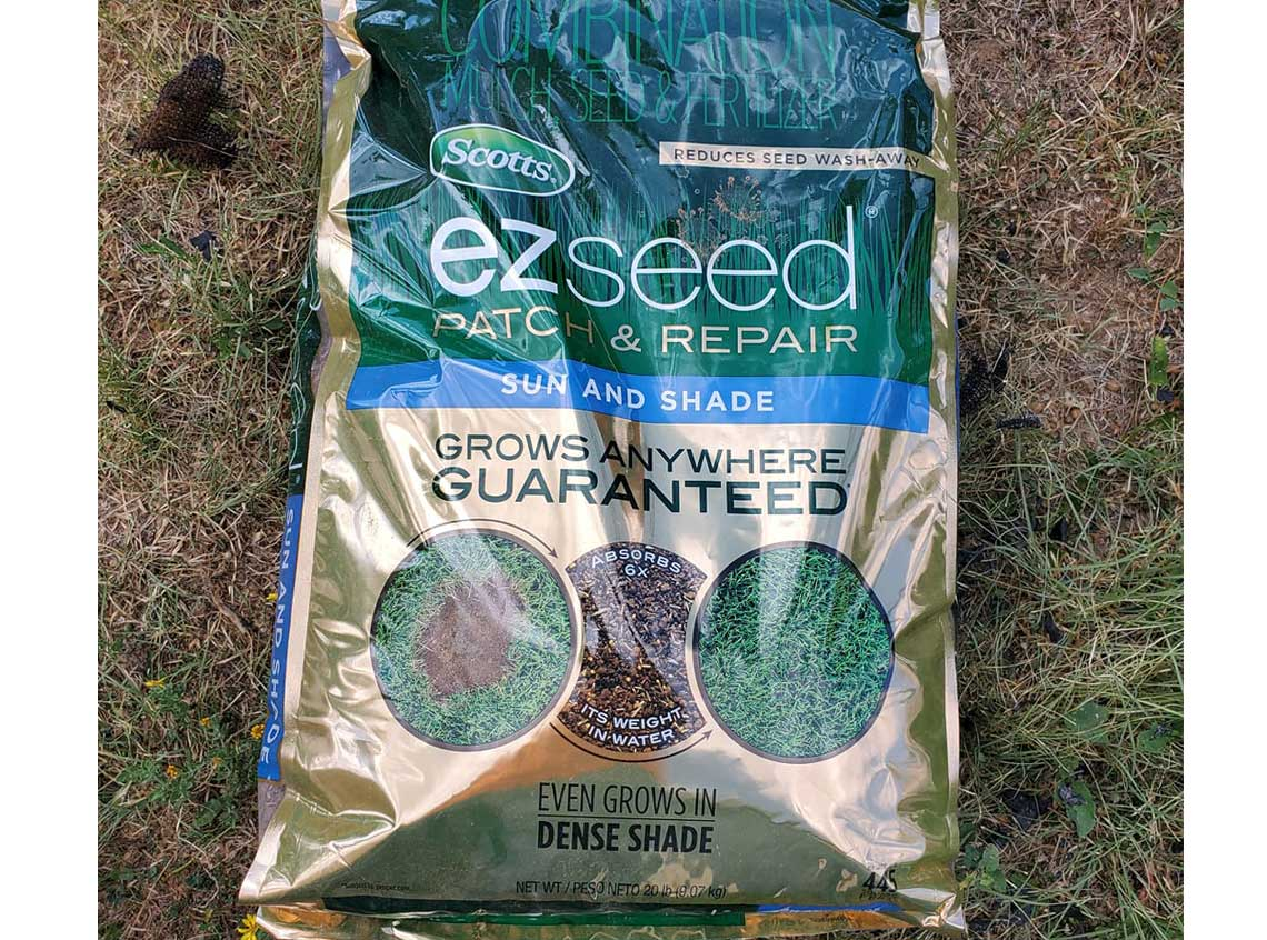 best grass seed for sun and shade