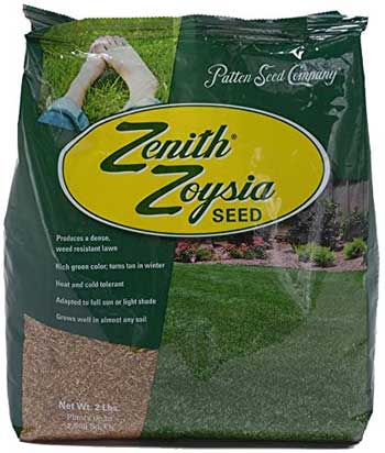 grass seed for sun and shade