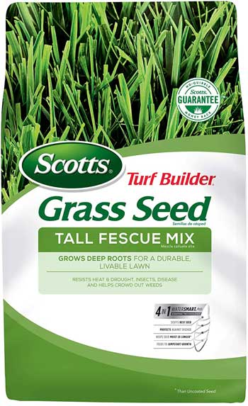 turf builder grass seed sun and shade mix