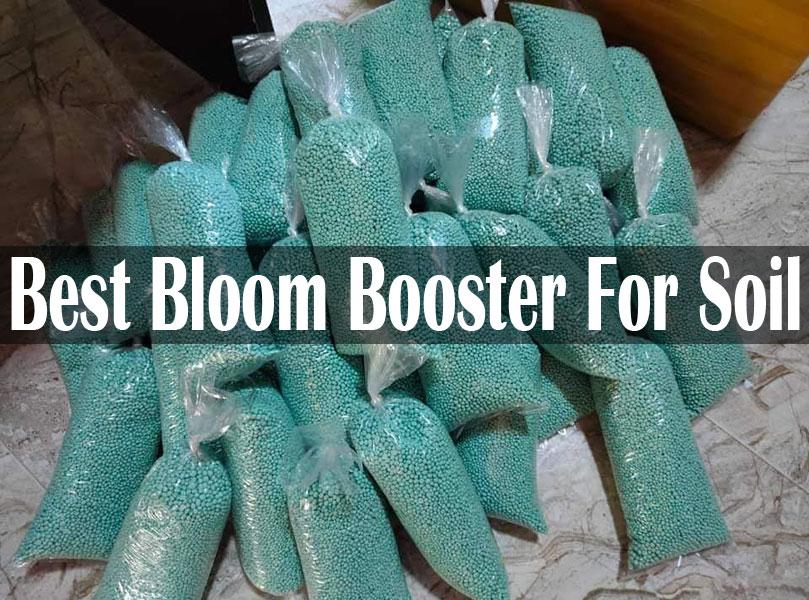 Best Bloom Booster For Soil