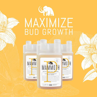 Mammoth Blooming Booster For Soil